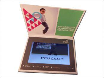 Plaquette vidéo écran LCD 10 pouces